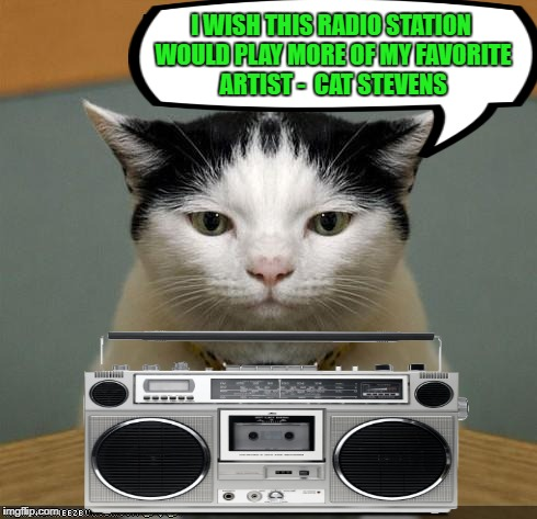 Cat Radio - Music Week!  March 5-11,A Phantasmemegoric & the coffeemaster Event | I WISH THIS RADIO STATION WOULD PLAY MORE OF MY FAVORITE ARTIST -  CAT STEVENS | image tagged in funny memes,cat,music week,a phantasmemegoric  thecoffeemaster event | made w/ Imgflip meme maker