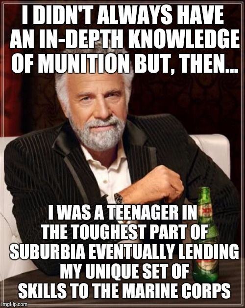 The Most Interesting Man In The World Meme | I DIDN'T ALWAYS HAVE AN IN-DEPTH KNOWLEDGE OF MUNITION BUT, THEN... I WAS A TEENAGER IN THE TOUGHEST PART OF SUBURBIA EVENTUALLY LENDING MY  | image tagged in memes,the most interesting man in the world | made w/ Imgflip meme maker
