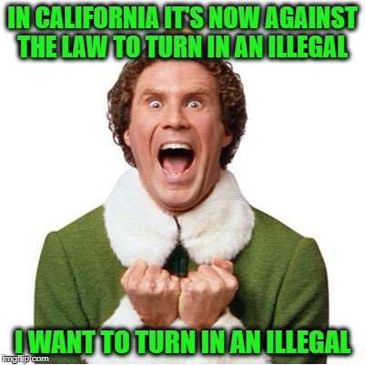 If Elf lived in California.... | IN CALIFORNIA IT'S NOW AGAINST THE LAW TO TURN IN AN ILLEGAL I WANT TO TURN IN AN ILLEGAL | image tagged in elf,memes,illegal immigration,donald trump approves,liberal vs conservative,you know what really grinds my gears | made w/ Imgflip meme maker