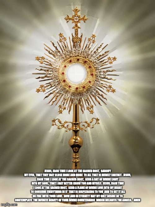 Prayer before Holy Sacrament  | JESUS, EACH TIME I LOOK AT THE SACRED HOST,  SANCIFY MY EYES,  THAT THEY MAY CLOSE MORE AND MORE  TO ALL THAT IS MERELY EARTHLY.  JESUS, EAC | image tagged in god,jesus,holyspirit,sacrament,communion | made w/ Imgflip meme maker