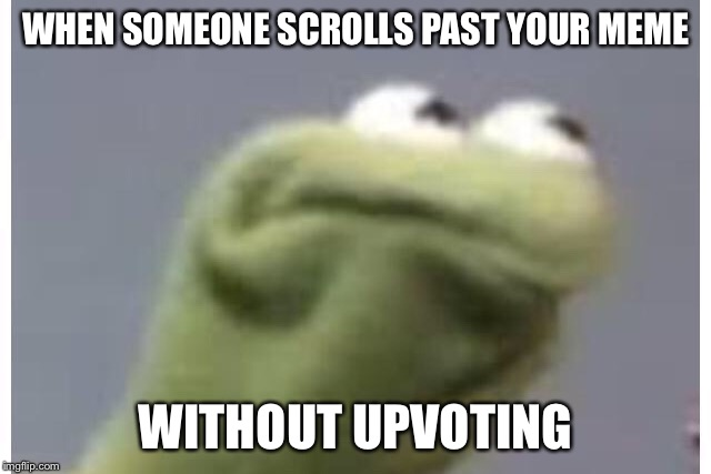 WHEN SOMEONE SCROLLS PAST YOUR MEME WITHOUT UPVOTING | image tagged in memes,kermit the frog | made w/ Imgflip meme maker