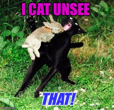 I CAT UNSEE THAT! | made w/ Imgflip meme maker