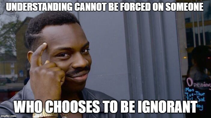 There are none so blind... | UNDERSTANDING CANNOT BE FORCED ON SOMEONE WHO CHOOSES TO BE IGNORANT | image tagged in memes,roll safe think about it | made w/ Imgflip meme maker