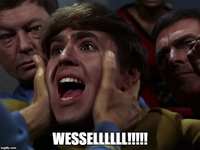 Wessel | WESSELLLLLL!!!!! | image tagged in chekov | made w/ Imgflip meme maker