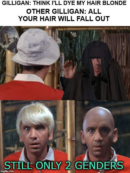 ginger vs mary ann (what about dat old lady giggity goo)   | GILLIGAN: THINK I'LL DYE MY HAIR BLONDE STILL ONLY 2 GENDERS OTHER GILLIGAN: ALL YOUR HAIR WILL FALL OUT | image tagged in evil gilligan,gilligans island week,gilligan's island,2 genders | made w/ Imgflip meme maker