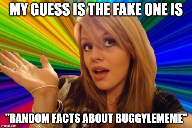 "MY GUESS IS THE FAKE ONE IS ""RANDOM FACTS ABOUT BUGGYLEMEME"" 