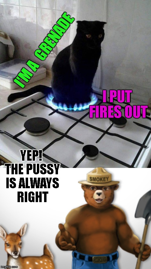 I'M A  GRENADE I PUT FIRES OUT YEP! THE PUSSY IS ALWAYS RIGHT | made w/ Imgflip meme maker