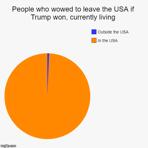 People who wowed to leave the USA if Trump won, currently living | In the USA, Outside the USA | image tagged in funny,pie charts | made w/ Imgflip pie chart maker