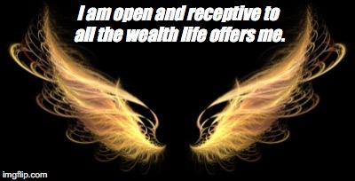 Wings | I am open and receptive to all the wealth life offers me. | image tagged in wings | made w/ Imgflip meme maker