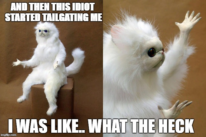 Persian Cat Room Guardian Meme | AND THEN THIS IDIOT STARTED TAILGATING ME I WAS LIKE.. WHAT THE HECK | image tagged in memes,persian cat room guardian | made w/ Imgflip meme maker