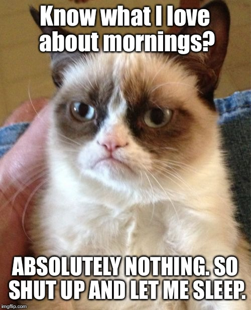 Grumpy Cat Meme | Know what I love about mornings? ABSOLUTELY NOTHING. SO SHUT UP AND LET ME SLEEP. | image tagged in memes,grumpy cat | made w/ Imgflip meme maker