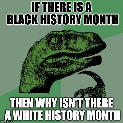 Philosoraptor Meme | IF THERE IS A BLACK HISTORY MONTH THEN WHY ISN'T THERE A WHITE HISTORY MONTH | image tagged in memes,philosoraptor | made w/ Imgflip meme maker