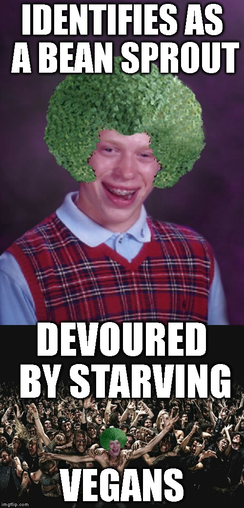This Meme Inspired By btbeeston (Check Out His Memes) | IDENTIFIES AS A BEAN SPROUT VEGANS DEVOURED BY STARVING | image tagged in bad luck brian,vegan,vegans,veganism,gender,gender identity | made w/ Imgflip meme maker