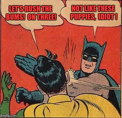 Batman Slapping Robin Meme | LET'S RUSH THE BUMS!  ON THREE! NOT LIKE THESE PUPPIES,  IDIOT ! | image tagged in memes,batman slapping robin | made w/ Imgflip meme maker