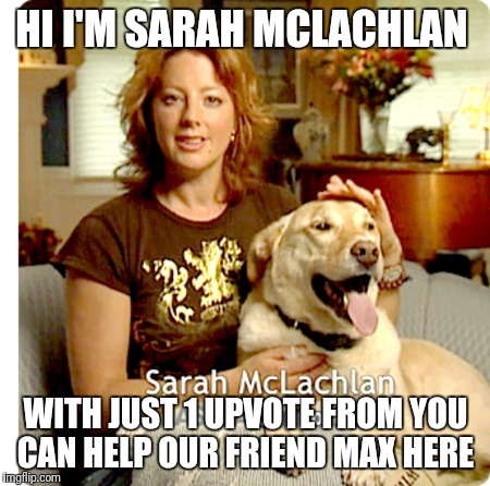 HI I'M SARAH MCLACHLAN WITH JUST 1 UPVOTE FROM YOU CAN HELP OUR FRIEND MAX HERE | image tagged in sarah mclachlan | made w/ Imgflip meme maker