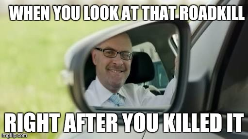 WHEN YOU LOOK AT THAT ROADKILL RIGHT AFTER YOU KILLED IT | image tagged in successful driver | made w/ Imgflip meme maker