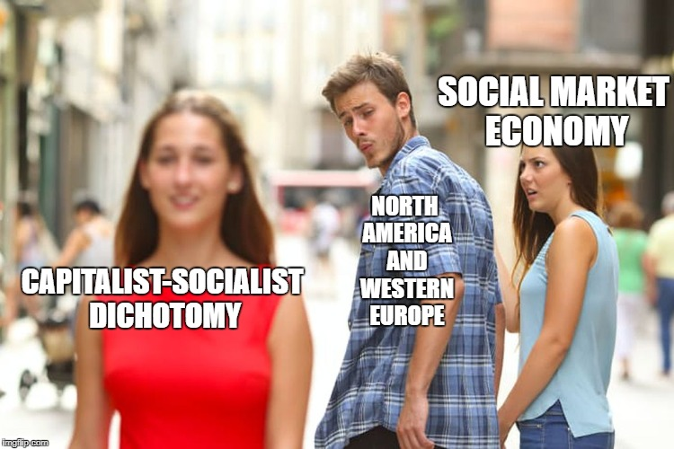 Meanwhile In The West | SOCIAL MARKET ECONOMY NORTH AMERICA AND WESTERN EUROPE CAPITALIST-SOCIALIST DICHOTOMY | image tagged in memes,distracted boyfriend,economics | made w/ Imgflip meme maker