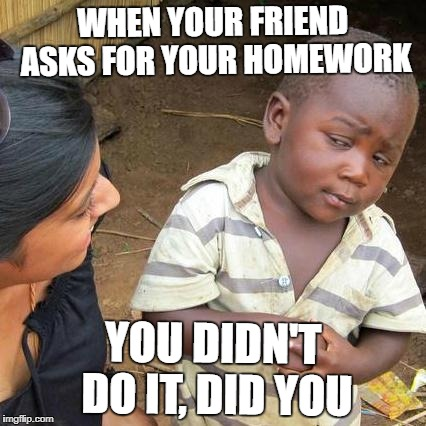 Third World Skeptical Kid Meme | WHEN YOUR FRIEND ASKS FOR YOUR HOMEWORK YOU DIDN'T DO IT, DID YOU | image tagged in memes,third world skeptical kid | made w/ Imgflip meme maker