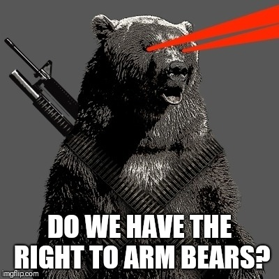 DO WE HAVE THE RIGHT TO ARM BEARS? | image tagged in 2nd amendment,gun control | made w/ Imgflip meme maker