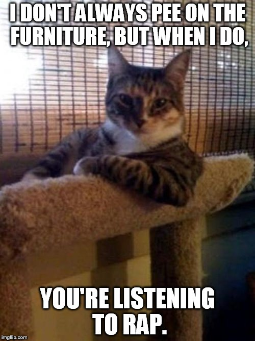 cats | I DON'T ALWAYS PEE ON THE FURNITURE, BUT WHEN I DO, YOU'RE LISTENING TO RAP. | image tagged in cats | made w/ Imgflip meme maker