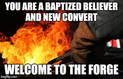 What it is really like . It isn't a rose garden where dreams are fulfilled. It is rather, where you are conformed to perfection. | YOU ARE A BAPTIZED BELIEVER AND NEW CONVERT WELCOME TO THE FORGE | image tagged in blacksmith / forge | made w/ Imgflip meme maker