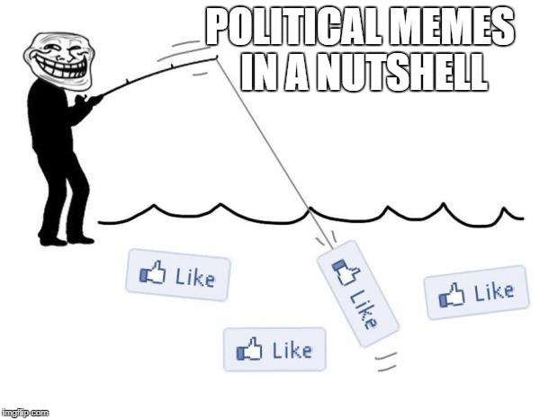 fishing for likes | POLITICAL MEMES IN A NUTSHELL | image tagged in fishing for likes | made w/ Imgflip meme maker