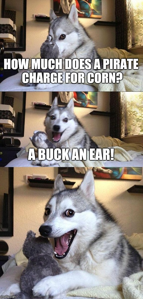haven't seen this meme in a while.. | HOW MUCH DOES A PIRATE CHARGE FOR CORN? A BUCK AN EAR! | image tagged in memes,bad pun dog | made w/ Imgflip meme maker
