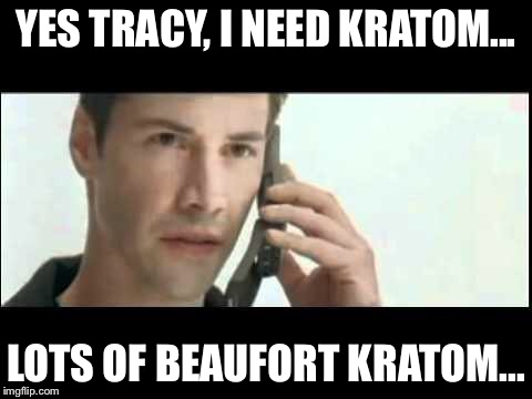 YES TRACY, I NEED KRATOM... LOTS OF BEAUFORT KRATOM... | image tagged in matrix lots of guns | made w/ Imgflip meme maker