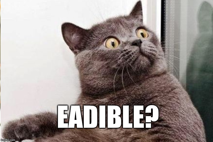 EADIBLE? | made w/ Imgflip meme maker