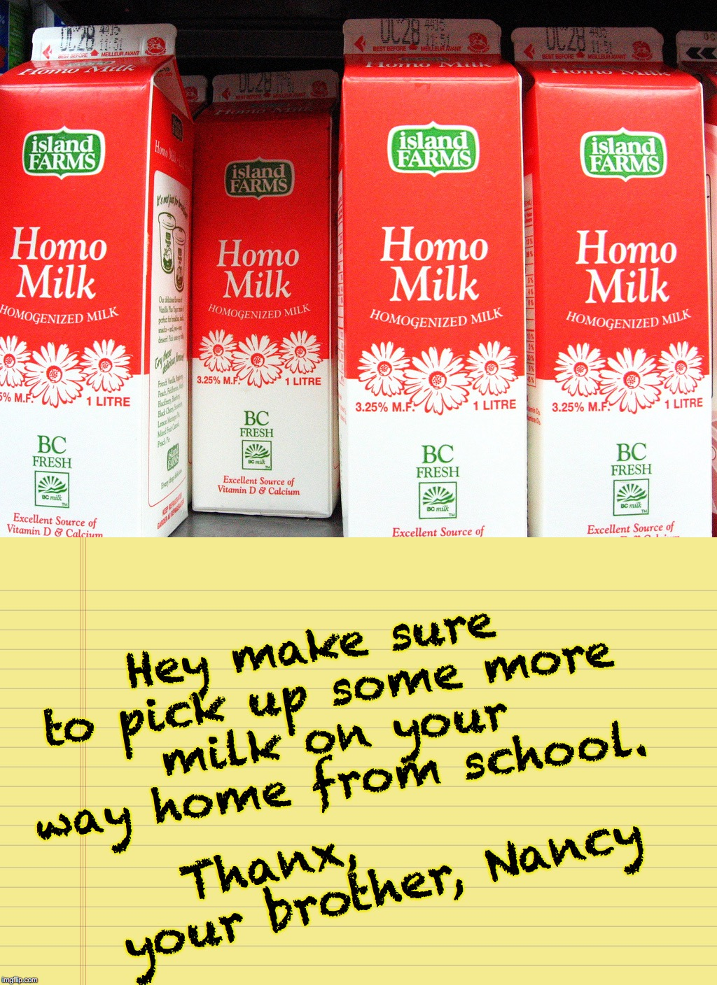 Thanx,         your brother, Nancy Hey make sure to pick up some more milk on your way home from school. | made w/ Imgflip meme maker