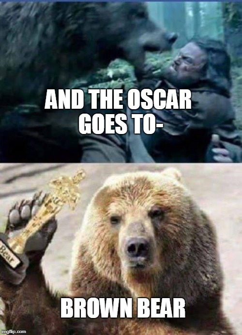 AND THE OSCAR GOES TO- BROWN BEAR | image tagged in oscars,leonardo dicaprio,bear | made w/ Imgflip meme maker
