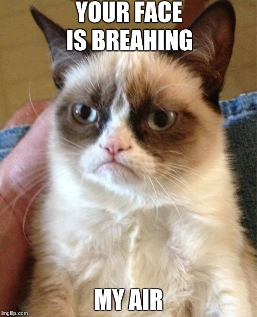 Get ya face out of here! | YOUR FACE MY AIR IS BREAHING | image tagged in memes,grumpy cat | made w/ Imgflip meme maker