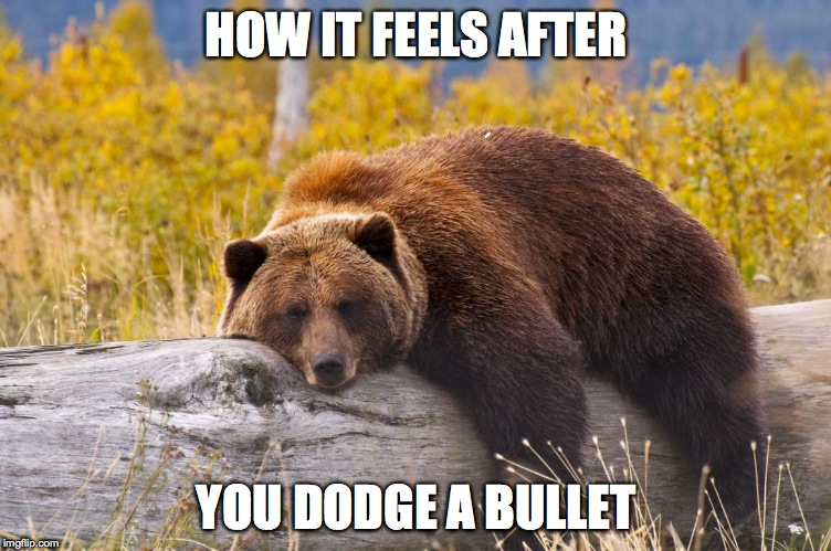 When You Know You've Made The Right Life Decision :-) | HOW IT FEELS AFTER YOU DODGE A BULLET | image tagged in relieved | made w/ Imgflip meme maker