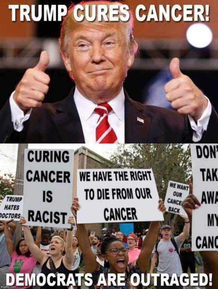 If Trump cured cancer... | . | image tagged in donald trump | made w/ Imgflip meme maker