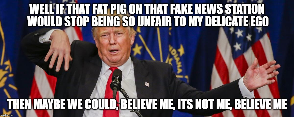 Trump limp | WELL IF THAT FAT PIG ON THAT FAKE NEWS STATION WOULD STOP BEING SO UNFAIR TO MY DELICATE EGO THEN MAYBE WE COULD, BELIEVE ME, ITS NOT ME, BE | image tagged in trump limp | made w/ Imgflip meme maker
