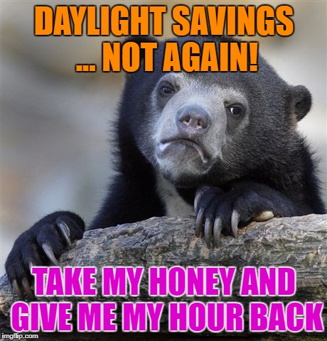 Daylight Savings - what about my hours savings? | DAYLIGHT SAVINGS ... NOT AGAIN! TAKE MY HONEY AND GIVE ME MY HOUR BACK | image tagged in memes,confession bear,funny memes,scumbag daylight savings time | made w/ Imgflip meme maker