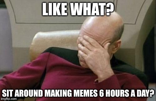 Captain Picard Facepalm Meme | LIKE WHAT? SIT AROUND MAKING MEMES 6 HOURS A DAY? | image tagged in memes,captain picard facepalm | made w/ Imgflip meme maker