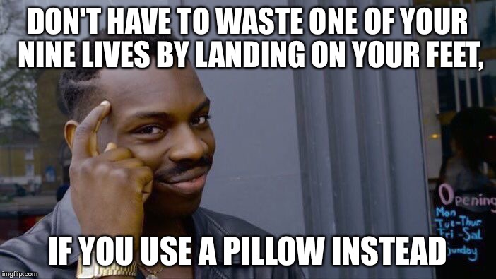 Roll Safe Think About It Meme | DON'T HAVE TO WASTE ONE OF YOUR NINE LIVES BY LANDING ON YOUR FEET, IF YOU USE A PILLOW INSTEAD | image tagged in memes,roll safe think about it | made w/ Imgflip meme maker