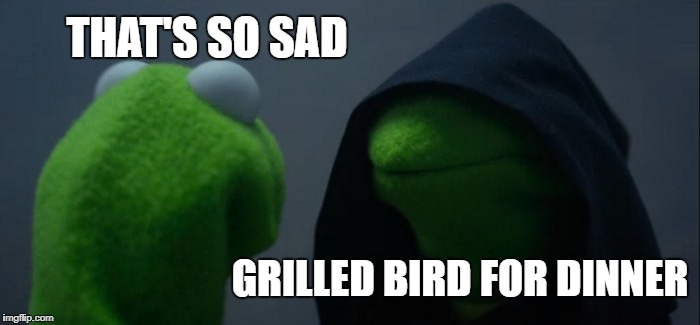 Evil Kermit Meme | THAT'S SO SAD GRILLED BIRD FOR DINNER | image tagged in memes,evil kermit | made w/ Imgflip meme maker