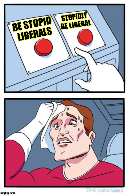 Two Buttons Meme | BE STUPID LIBERALS STUPIDLY BE LIBERAL | image tagged in memes,two buttons | made w/ Imgflip meme maker