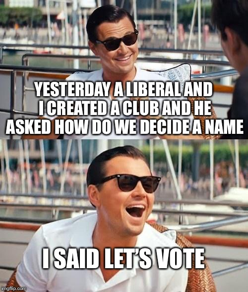 Leonardo Dicaprio Wolf Of Wall Street Meme | YESTERDAY A LIBERAL AND I CREATED A CLUB AND HE ASKED HOW DO WE DECIDE A NAME I SAID LET'S VOTE | image tagged in memes,leonardo dicaprio wolf of wall street,liberals,unbreaklp,vote,liberal logic | made w/ Imgflip meme maker