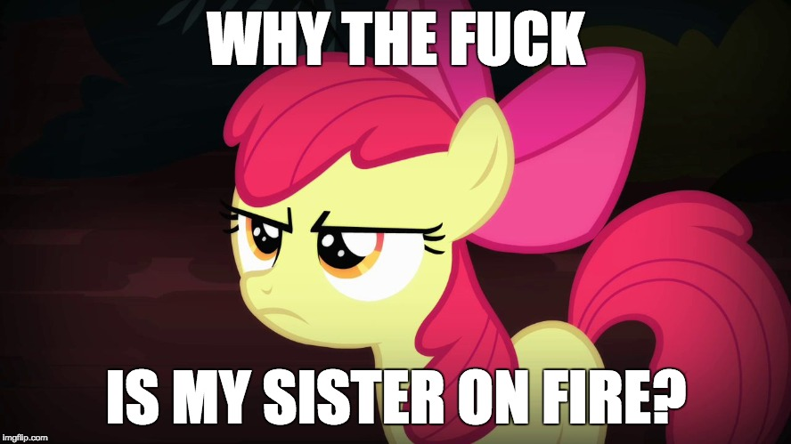 Angry Applebloom | WHY THE F**K IS MY SISTER ON FIRE? | image tagged in angry applebloom,memes,fire,sister,ponies | made w/ Imgflip meme maker