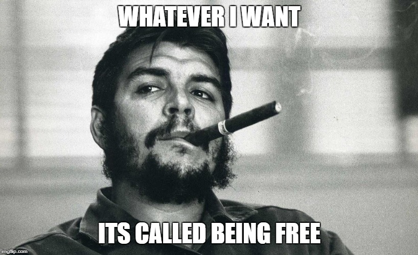 Che | WHATEVER I WANT ITS CALLED BEING FREE | image tagged in che | made w/ Imgflip meme maker