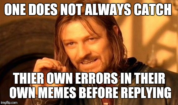 One Does Not Simply Meme | ONE DOES NOT ALWAYS CATCH THIER OWN ERRORS IN THEIR OWN MEMES BEFORE REPLYING | image tagged in memes,one does not simply | made w/ Imgflip meme maker