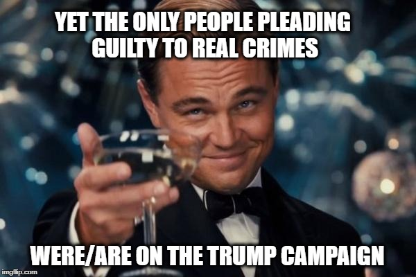 Leonardo Dicaprio Cheers Meme | YET THE ONLY PEOPLE PLEADING GUILTY TO REAL CRIMES WERE/ARE ON THE TRUMP CAMPAIGN | image tagged in memes,leonardo dicaprio cheers | made w/ Imgflip meme maker
