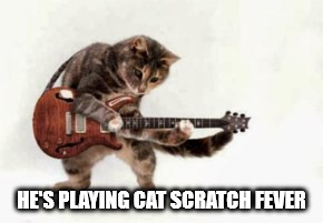 HE'S PLAYING CAT SCRATCH FEVER | made w/ Imgflip meme maker