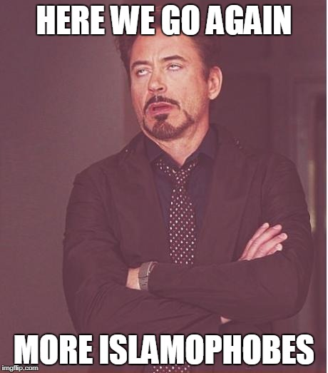 Face You Make Robert Downey Jr | HERE WE GO AGAIN MORE ISLAMOPHOBES | image tagged in memes,face you make robert downey jr,islamophobia,anti-islamophobia,persecution,anti-persecution | made w/ Imgflip meme maker