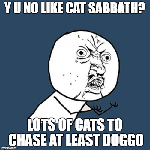 Y U No Meme | Y U NO LIKE CAT SABBATH? LOTS OF CATS TO CHASE AT LEAST DOGGO | image tagged in memes,y u no | made w/ Imgflip meme maker