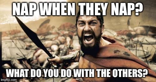 Sparta Leonidas Meme | NAP WHEN THEY NAP? WHAT DO YOU DO WITH THE OTHERS? | image tagged in memes,sparta leonidas | made w/ Imgflip meme maker