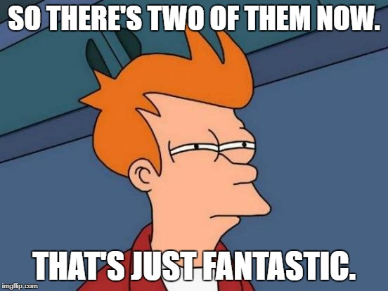 Futurama Fry Meme | SO THERE'S TWO OF THEM NOW. THAT'S JUST FANTASTIC. | image tagged in memes,futurama fry | made w/ Imgflip meme maker